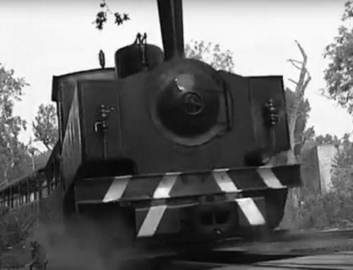 La voie ferrée du nouveau train à vapeur de Pairi Daiza